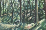 11-003 - Holkham  Pinewoods - SOLD