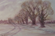 12-005 - Winter's Glow Lammas - £45 - Watercolour on Paper - White	mount 35x27cm