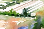 13-040 - Cornus on the River - £38 - Watercolouron Paper - White mount 25x20cm