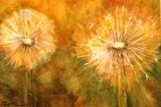 13-090 - Dandelion Fal - Watercolour on W/C Paper - £25.00 - 25x20cm - Mountedyes