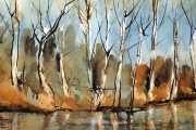13-092 - Autumn Glow on the River Ant - SOLD