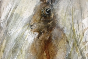 13-117 - Hare - Watercolour on W/C Paper - £45.00 - 35x28cm - Mounted