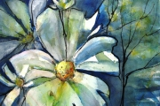 13-046 - Daisy Dreaming - Acrylic on W/C Paper - £75.00 - Mounted 50x40cm