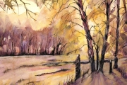 14-013 - Through the Trees -£113 -  Watercolour on W/C Paper -  White mount 50x40cm
