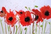 14-037 - Crimson Field - £116 - Watercolour on W/C Paper - White mount in Black frame 40x30cm