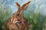 14-042 - Hare - £68 - Watercolour on W/C Paper - Mounted 35x28cm