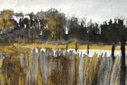 14-069 - Broadland Reedbeds - SOLD