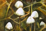 14-077 - Toadstools - £98 - Mixed Media on W/C Paper - White mount in Black frame 35x28