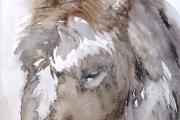 15-020 - Donkey - SOLD