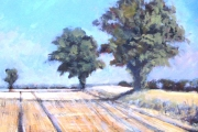 15-025 - Norfolk Shadows - £225 - Acrylic on  Board - Spec frame 36x31cm