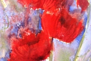 15-038 - Summer Delight - £68 - Watercolour on W/C Paper  - White mount 35x28