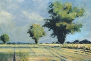 15-045 - Norfolk Oaks - £155 - Acrylic on W/C Paper - White mount in Oak frame 50x40cm