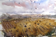 15-052 As the Crows Fly £154.50Watercolour on W/C Paper Mounted 50x40cm in Oak Frame