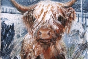 160-004 Highland Cow - SOLD