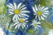 160-010 Daisies £115.50 Watercolour on W/C Paper Mounted 40x30 in Black Frame