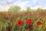 160-018 Summer's Glow - £97.50Watercolour on W/C Paper - Mounted 45x35cm