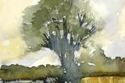 160-032 - By the Cornfield - £67.50 - Watercolouron W/C Paper - Mounted35x28cm